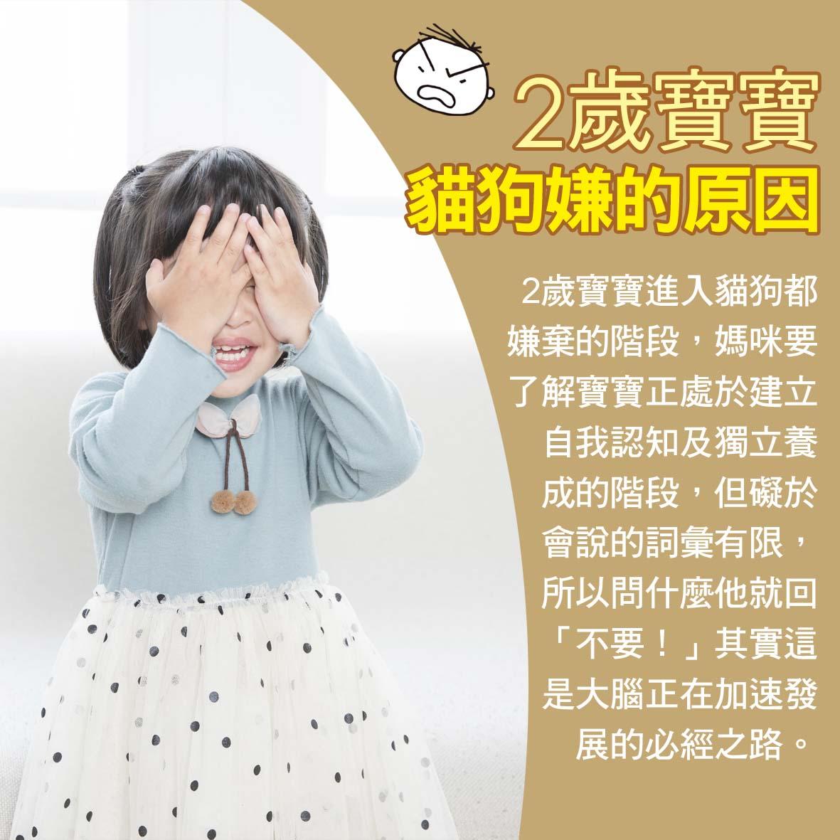 寶寶篇1歲第47~48週-2歲寶寶貓狗嫌的原因