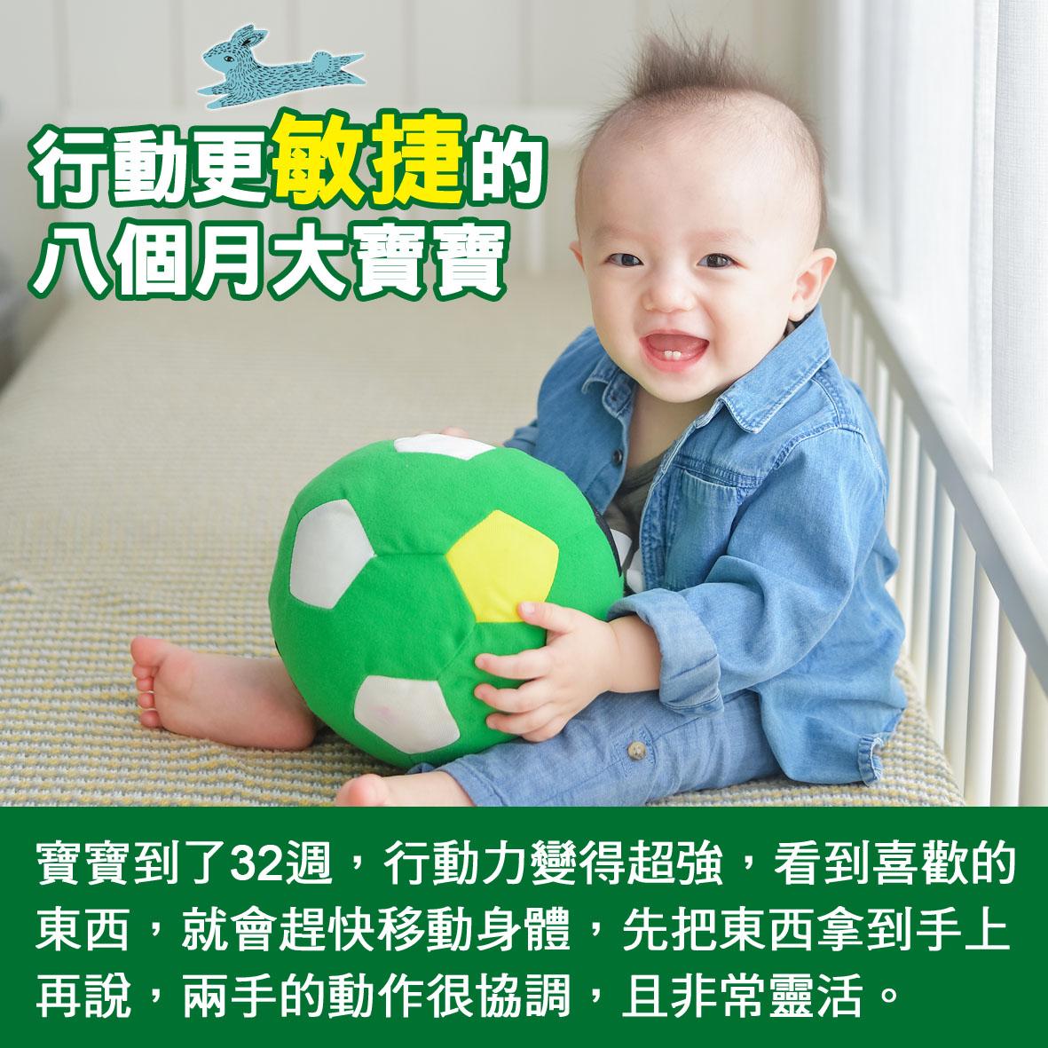 寶寶篇第32週-行動更敏捷的八個月大寶寶
